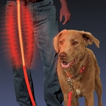 Nite-Dawg™ L.E.D. Light-up Pet Leash