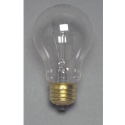 Replacement Incandescent Bulb, 120V AC